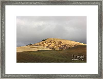 Bald Hill Above Winter Wheat Framed Print by Linda Meyer