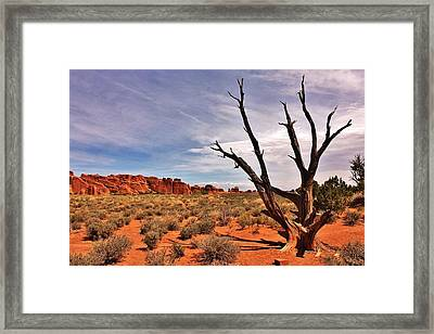 Bald Tree At Arches  Framed Print by Benjamin Yeager