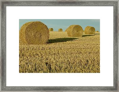 Bales Of Grain At Harvest Time Framed Print by Cyril Ruoso