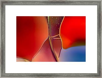 Ballerina Framed Print by Omaste Witkowski