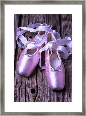 Ballet Slippers Framed Print by Garry Gay