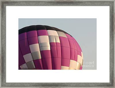 Balloon-purple-7457 Framed Print by Gary Gingrich Galleries