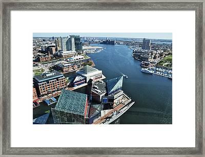Baltimore Harbor Framed Print by Andrew Dinh