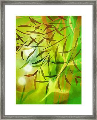Bamboo Light Framed Print by Lutz Baar