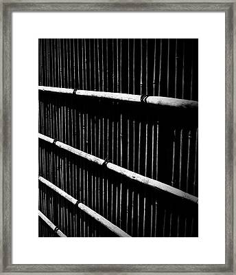 Bamboo Screen Framed Print by Claire Carpenter
