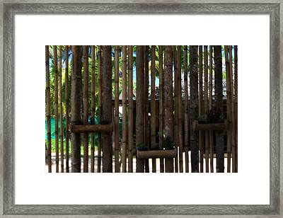 Bamboo View Framed Print by Georgia Fowler