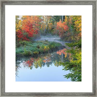 Bantam River Autumn Square Framed Print by Bill Wakeley