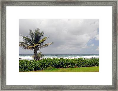 Barbados And The Ocean Framed Print by Willie Harper