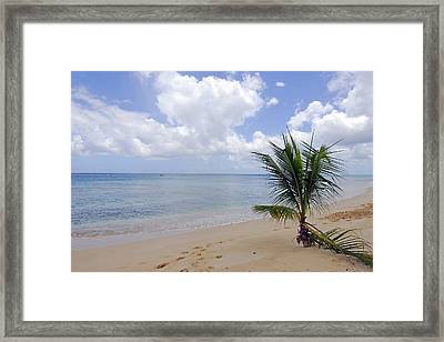 Barbados Beach Framed Print by Willie Harper