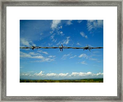 Barbed Sky Framed Print by Nina Ficur Feenan