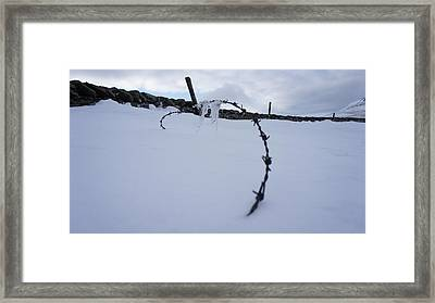 Barbed Wire Framed Print by Riley Handforth