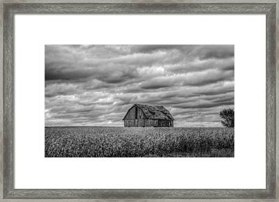 Barn Ahoy Framed Print by Ray Congrove