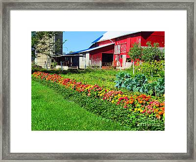 Barn And Garden Framed Print by Tina M Wenger