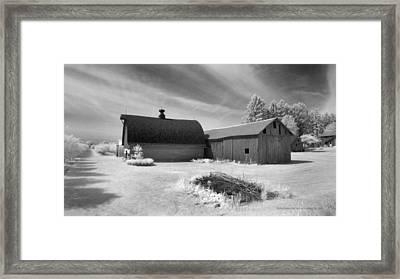 Barn And Grove On Hwy Z Framed Print by Stephen Mack