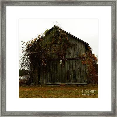 Barn Framed Print by Andrea Anderegg