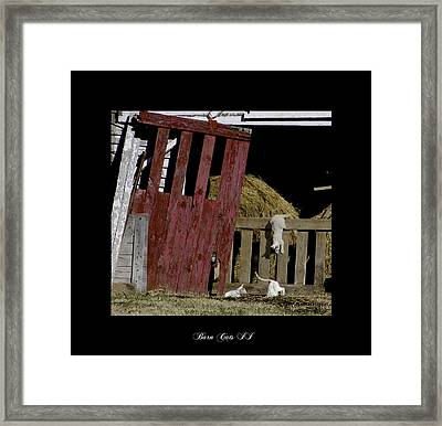 Barn Cats II Framed Print by Gina Munger