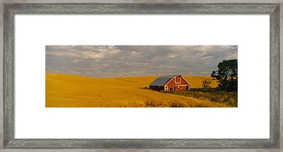 Barn In A Wheat Field, Palouse Framed Print by Panoramic Images