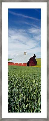 Barn In A Wheat Field, Washington Framed Print by Panoramic Images