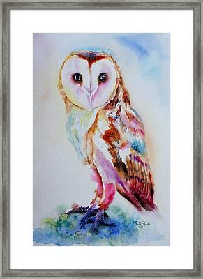 Barn Owl Framed Print by Isabel Salvador