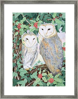 Barn Owls Framed Print by Suzanne Bailey