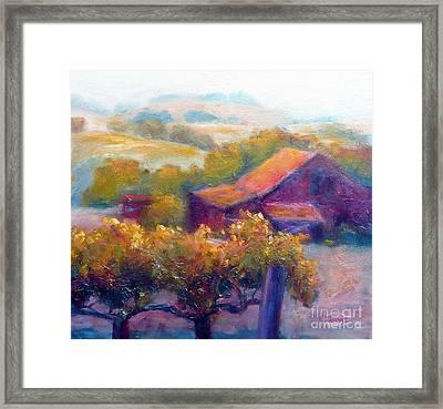 Barn Vineyard Framed Print by Carolyn Jarvis
