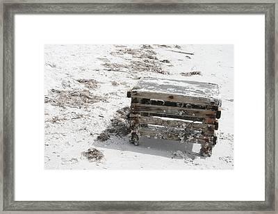 Barnacles On The Beach Framed Print by Georgia Fowler