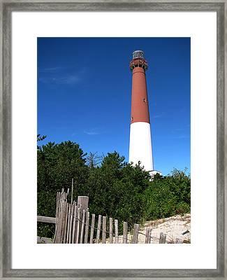 Barnegat Lighthouse Framed Print by Colleen Kammerer