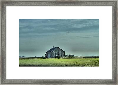 The Flight Home Framed Print by Dan Sproul