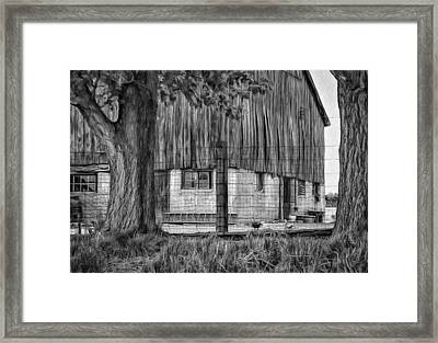 Barnyard 2 - Paint Bw Framed Print by Steve Harrington
