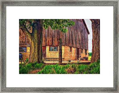 Barnyard 2 - Paint Framed Print by Steve Harrington