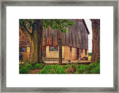 Barnyard 2 Framed Print by Steve Harrington