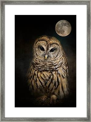 Barred Owl And The Moon Framed Print by Jai Johnson