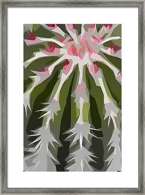 Barrel Cactus Collage Framed Print by Carol Leigh