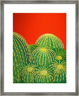 Barrel Cactus Framed Print by Karyn Robinson