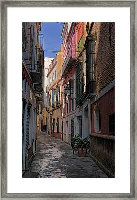 Barrio Santa Cruz Seville Framed Print by Joan Carroll