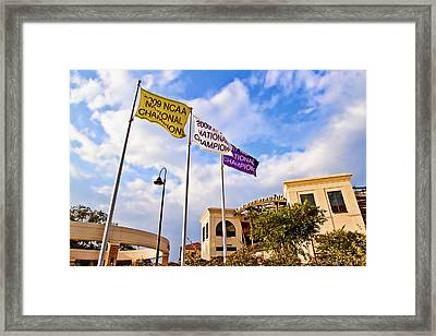 Baseball At The Box Framed Print by Scott Pellegrin