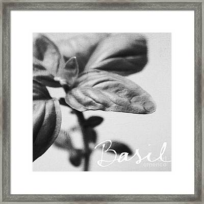 Basil Framed Print by Linda Woods