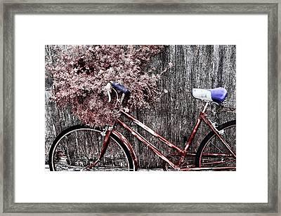Basket Full Framed Print by Mark Kiver
