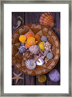 Basket Full Of Seashells Framed Print by Garry Gay