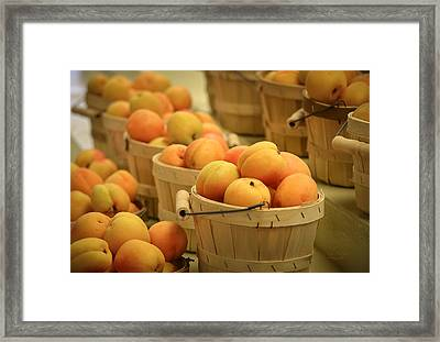 Baskets Of Apricots Framed Print by Julie Palencia