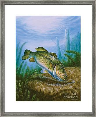 Bass And Crawdad Framed Print by Jon Q Wright