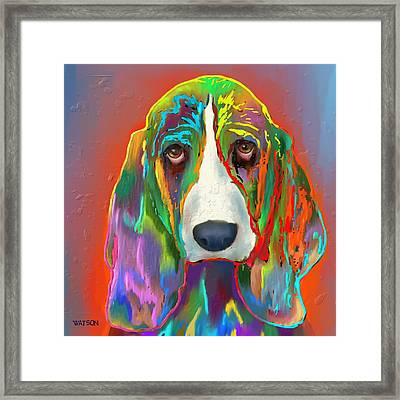 Basset Hound Framed Print by Marlene Watson