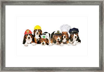 Bassets In Work Hats  Framed Print by Susan Schmitz