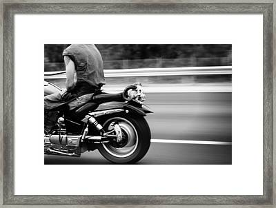 Bat Out Of Hell Framed Print by Laura Fasulo