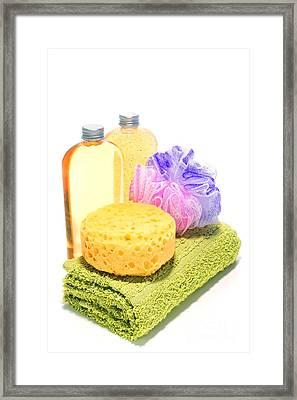 Bath Time Framed Print by Olivier Le Queinec