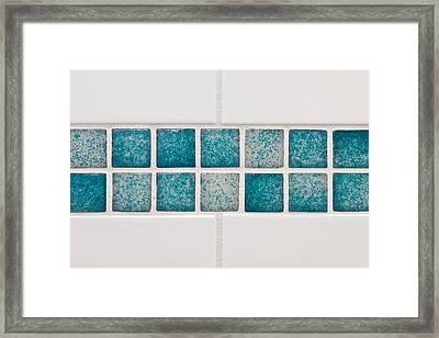 Bathroom Tiles Framed Print by Tom Gowanlock