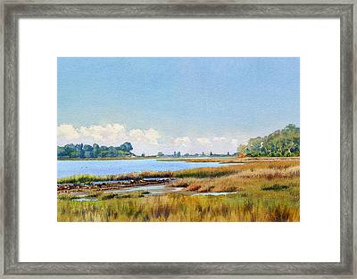 Batiquitos Lagoon Marshland Framed Print by Mary Helmreich