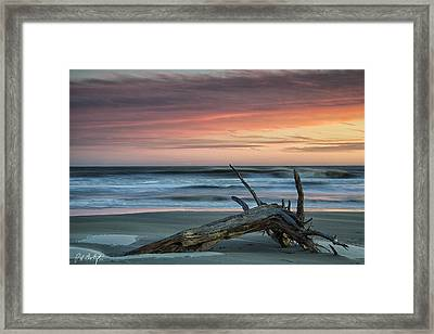 Battered Driftwood Framed Print by Phill Doherty