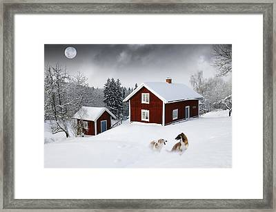 Battle And Play Of Giant Borzois Framed Print by Christian Lagereek