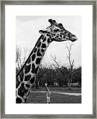 Battle Of Heights Framed Print by Photography  By Sai